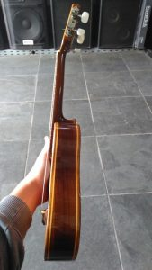 Cavaco Luthier (2)