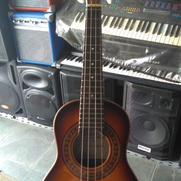 Cavaco Luthier